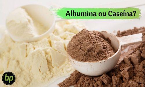 Albumina ou caseína